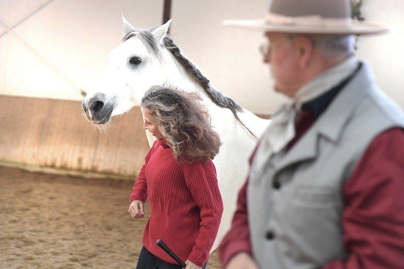 Bea Hohl Pferdeprofis