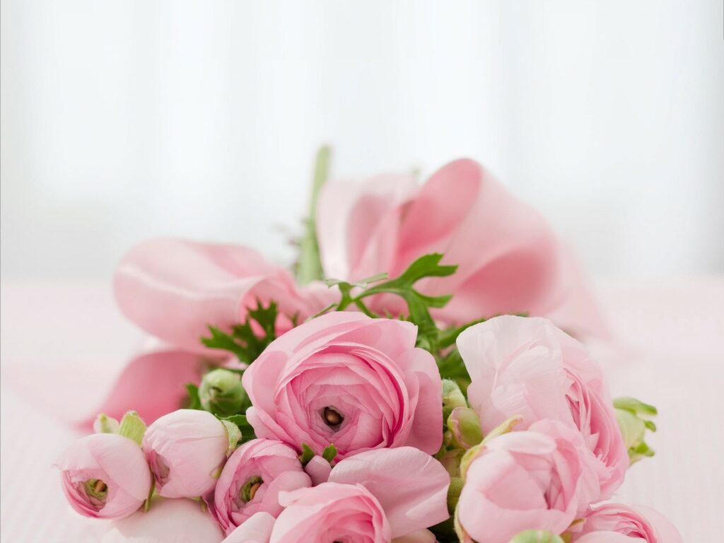 Frau - Muttertag Blumen